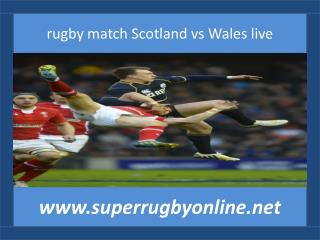 rugby match Scotland vs Wales live