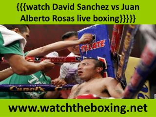 watch Sanchez vs Rosas live boxing fight