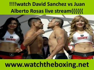 live fighting Sanchez vs Rosas