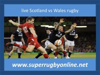 Scotland vs Wales live rugby