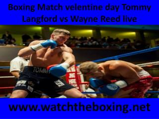 boxing Tommy Langford vs Wayne Reed live fight