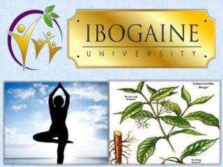 Ibogaine University