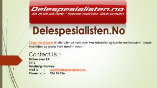 Bildeler på nett i Norge