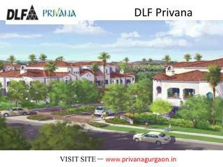 Call us at 09891856789 - DLF Privana Sector 76 - 77, Gurgaon