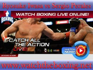 boxing Ryosuke Iwasa vs Sergio Perales live coverage