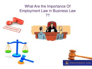 What Are the Importance Of Employment Law in Business Law ??