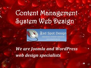 Content Management System Web Design