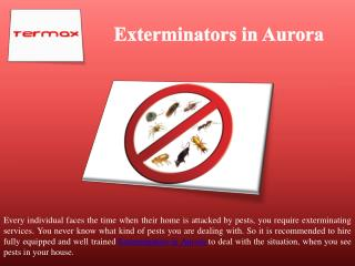 Exterminators in Aurora