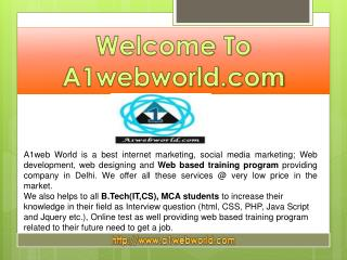Best Internet Marketing service provider-A1web world