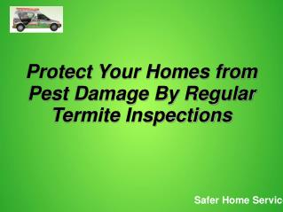 Protect Your Homes From Pest Damage by Regular Termite Inspe