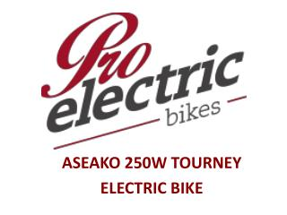 Pro Electric Bikes - ASEAKO 250W TOURNEY Electric Bikes