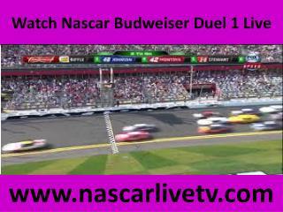 Watch Nascar Budweiser Duel 1 Live