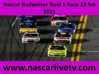 Online Nascar Budweiser Duel 1 Live Sprint Cup 2015