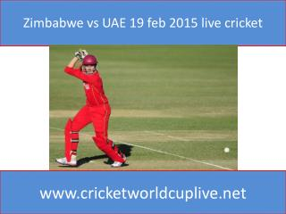 Zimbabwe vs UAE 19 feb 2015 live cricket