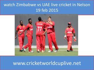 watch Zimbabwe vs UAE live cricket in Nelson 19 feb 2015