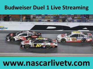 Watch Nascar Online Budweiser Duel 1 Sprint Cup 19 feb 2015