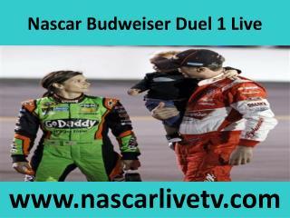 Live Nascar Budweiser Duel 1