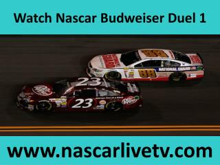 Watch Nascar Online Budweiser Duel 1