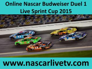 Nascar Sprint Cup Daytona International Speedway 19 feb 2015