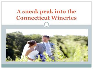 A sneak peak into the Connecticut Wineries