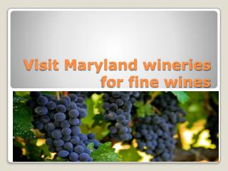 Visit Maryland wineries for fine wines