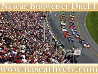 Nascar Budweiser Duel 1 Race 19 feb 2015