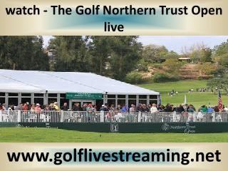 watch Golf Northern Trust Open live 2015 hd videos