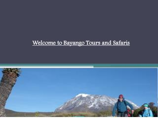Welcome to Bayango Tours and Safaris