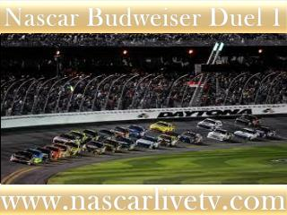 Watch Nascar Budweiser Duel 1 Race Live Broadcast