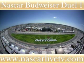 Nascar Budweiser Duel 1 Race Live Telecast