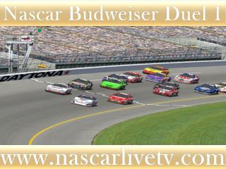 Watch Nascar Budweiser Duel 1 Race 19 feb 2015