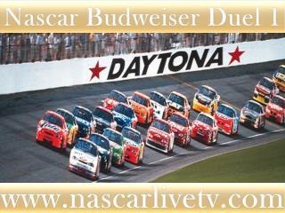Nascar Sprint Cup Live Racing