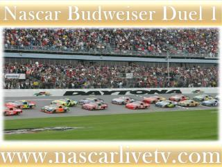 Nascar In Daytona