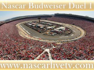 2015 Daytona Budweiser Duel 2