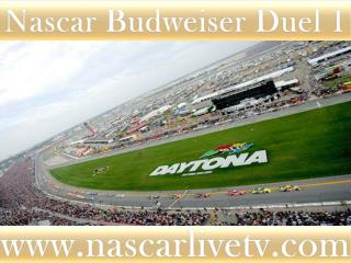See Nascar Sp Cup Budweiser Duel 1 Race Live