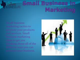 Small Business in Marketing