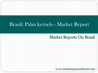 Brazil: Palm kernels - Market Report. Analysis and Forecast