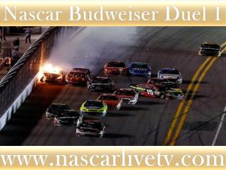 See Nascar Budweiser Duel 1 Race Live Broadcast