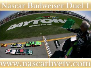 watch Budweiser Duel 1 at Daytona live stream