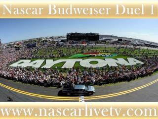 watch 75-lap Budweiser Duel 1 at Daytona online