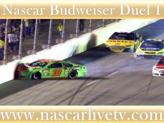 watch 75-lap Budweiser Duel 1 at Daytona online racing