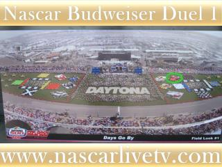 online live Budweiser Duel 1 at Daytona