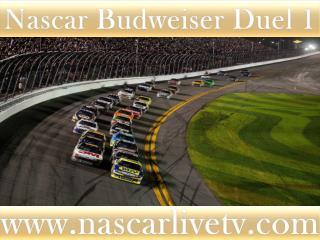 watch live 75-lap Budweiser Duel 1 at Daytona on mac