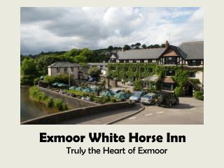 Exmoor Whitehorse Features