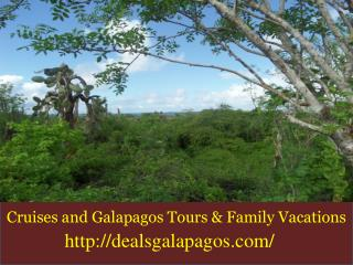 Best galapagos tour companies for your family