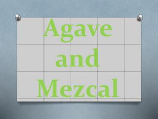 Agave and Mezcal