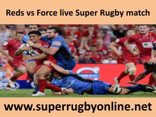 Reds vs Force live Super Rugby match