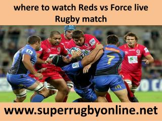 where to watch Reds vs Force live Rugby match