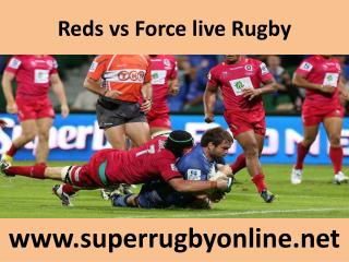 Watch Reds vs Force live Rugby