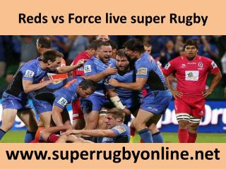 watch Reds vs Force Rugby online